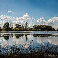 Entre los arroyos que bifurcan el Delta