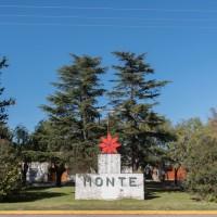 San Miguel del monte: Una crónica que debió haber sido feliz